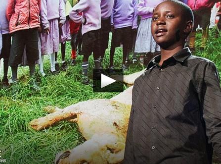 Traité de Paix… avec les Lions ! – Richard Turere – TED Talks